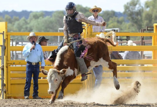 Australian Professional Rodeo Association Site Home