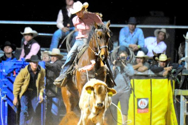 Australian Professional Rodeo Association | Site Home