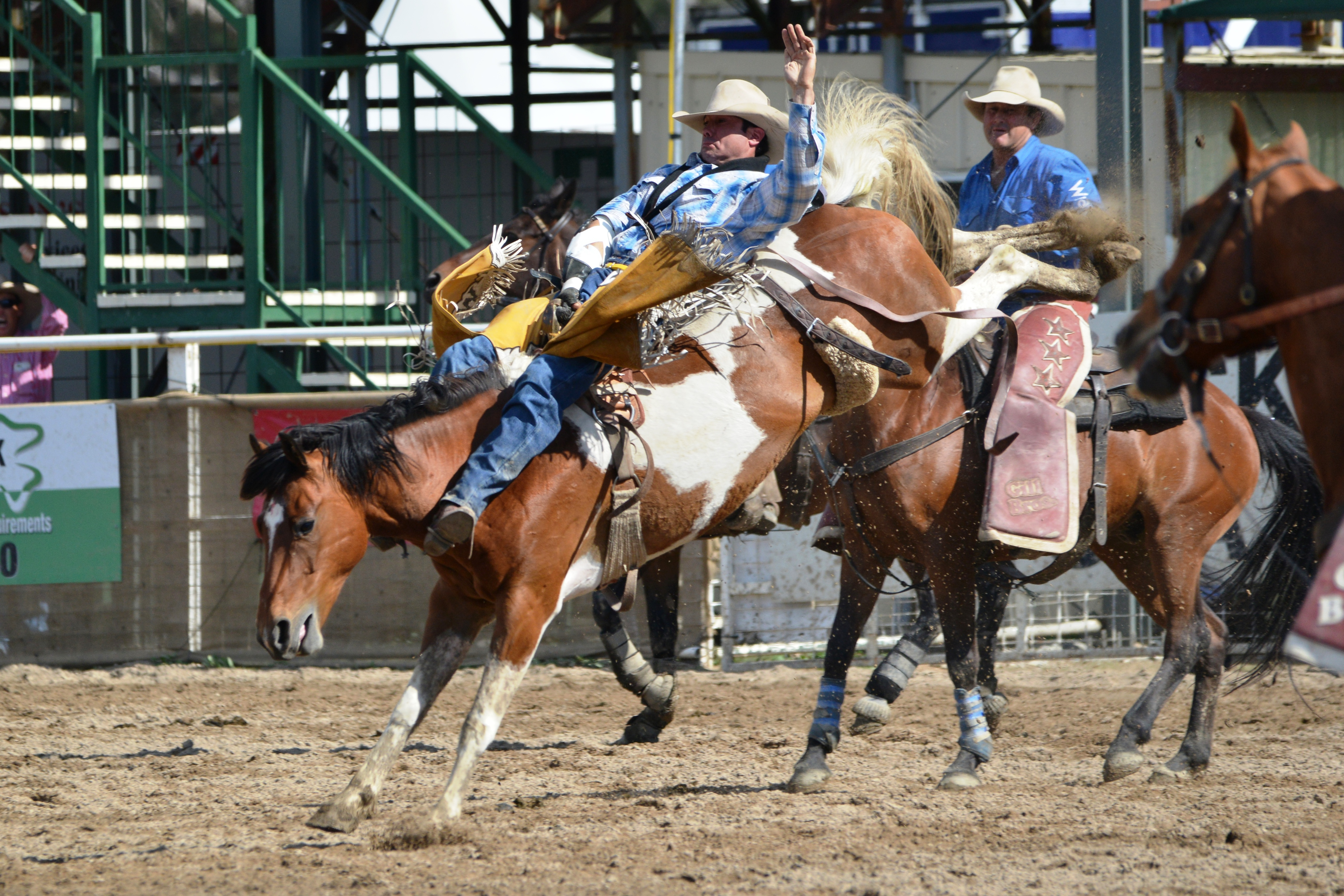 Australian Professional Rodeo Association Australian